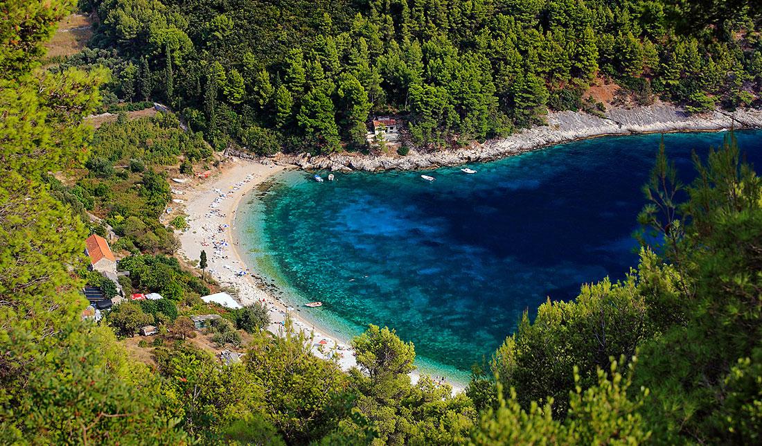 Aerial photo of a beach in Pupnatska Luka, on Korčula, with pine trees, cler blue sea