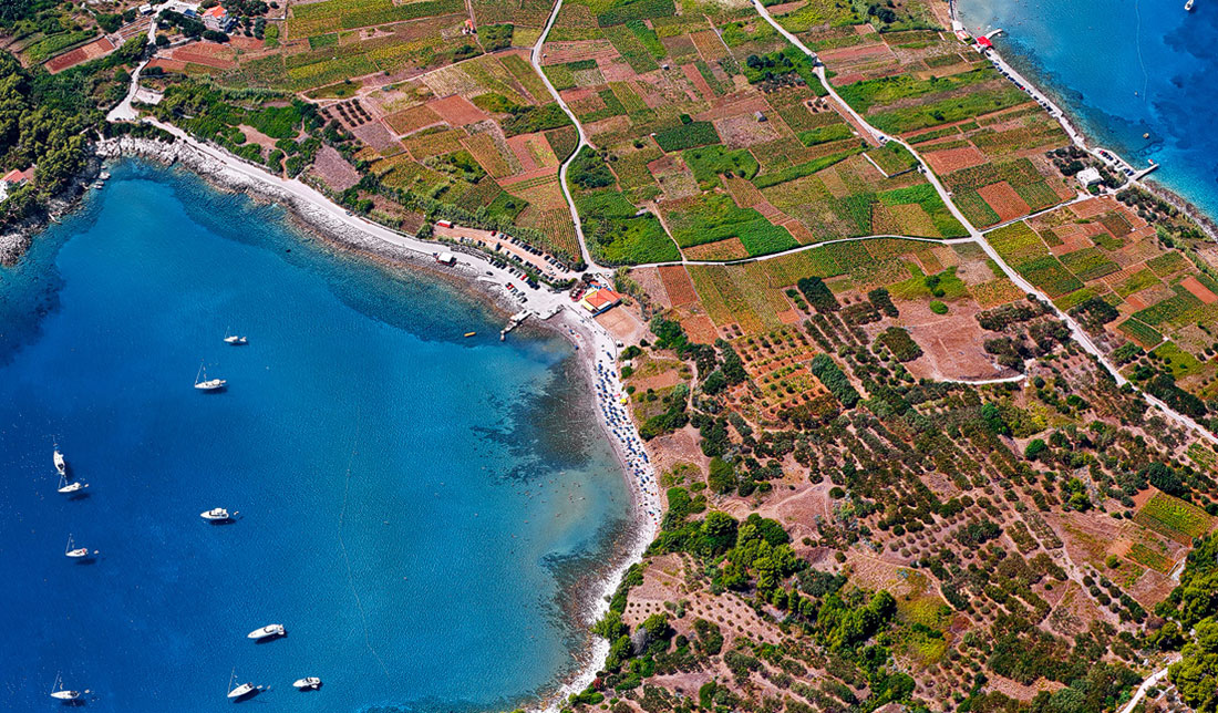 Aerial Photo of two sandy beaches near Lumbarda on island of Korčula surrounded with green vineyards and blue sea