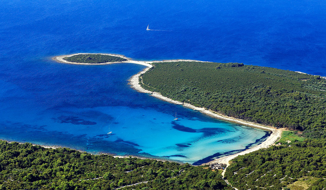 Aerial photo of Sakarun beach on island of Dugi otok, one of the most famous sandy beaches in Croatia surrounded with pine trees