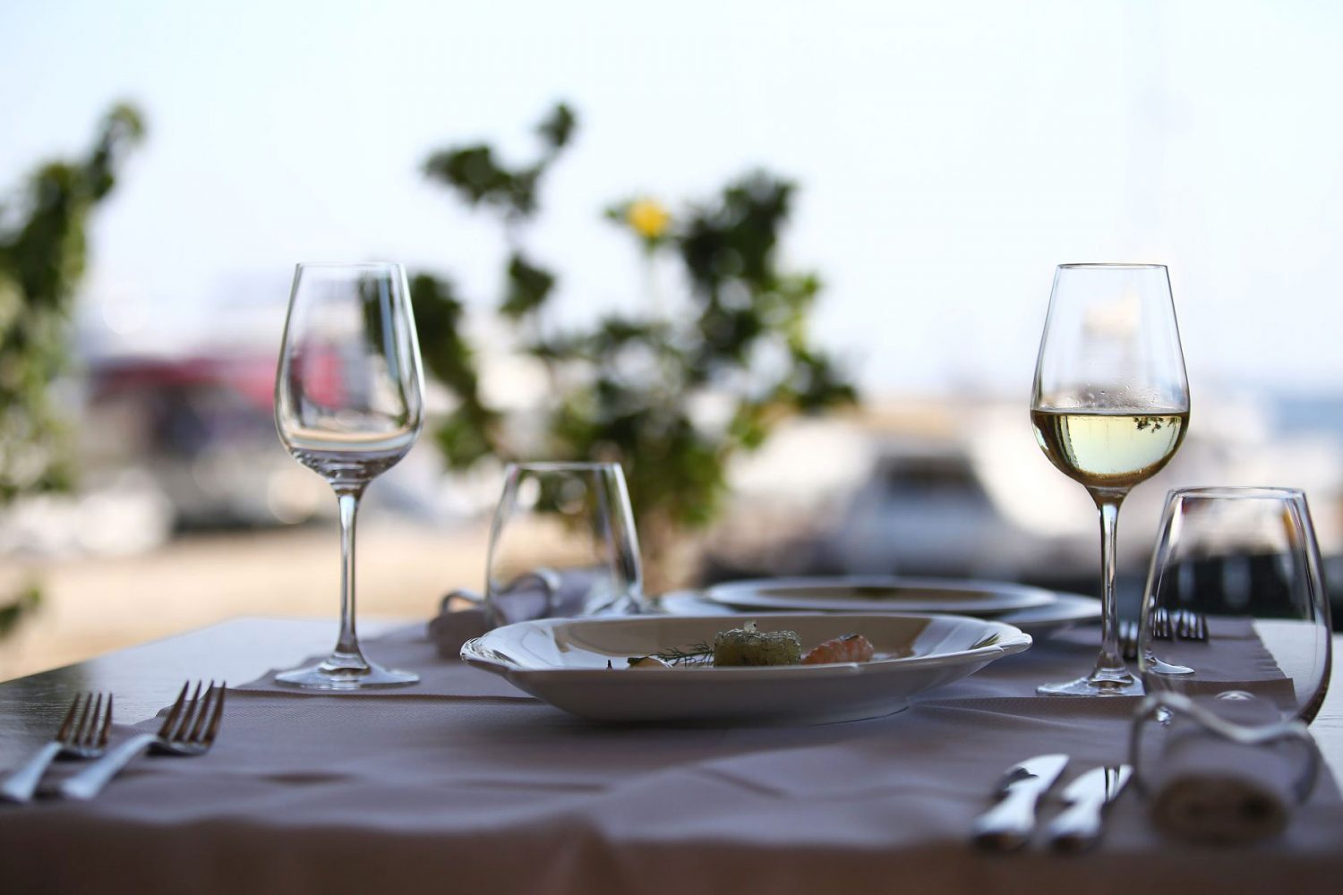 Archipelago Tours Kornati private tour - Kornati Experience Private Boat Tour photo of a table with glasses and food